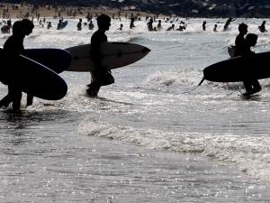 surfistak donostia efe