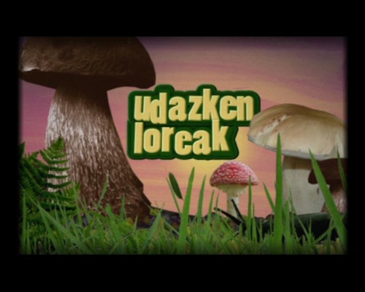 SETAS 177885_udazken_loreak_27_9_original_imagen