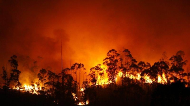 Fragas do Eume forest blaze.