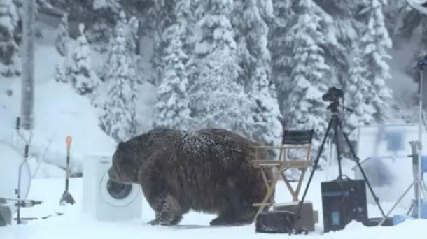 El oso y la  lavadora