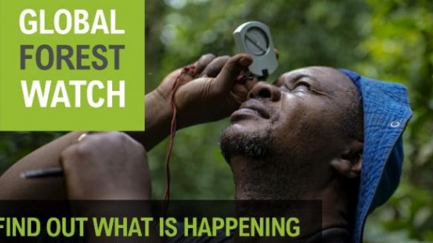 [Imagen: global-forest-watch-WRI_foto610x342.jpg]