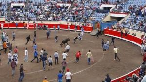 El Ayuntamiento de Bilbao rechaza la consulta sobre toros en la ciudad