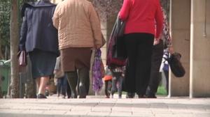 El PNV plantea un sistema de seguridad social propio mixto
