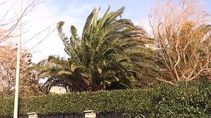 Amplían la alerta por fuertes vientos al lunes y martes en Euskadi